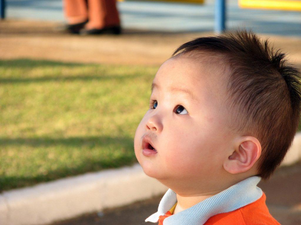 Thai Adoption Process