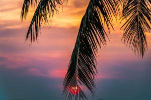 Thai Retirement Visa